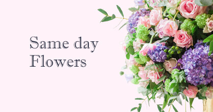Same day Flowers Sidcup